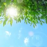 紫外線の目への影響は大丈夫?注意すべき時間帯は?